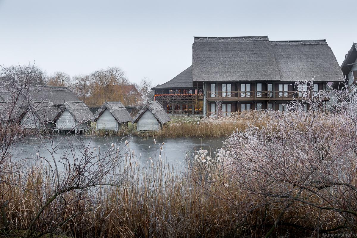 Delta pe răcoare – Crăciun la Green Village