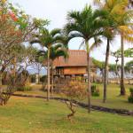 Casuta dintre palmieri