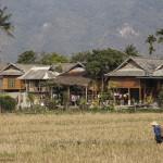 Casele de la marginea satului