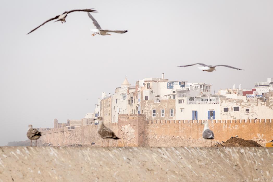 Maroc – Pagina 3 – Aventurile lui Habarnam