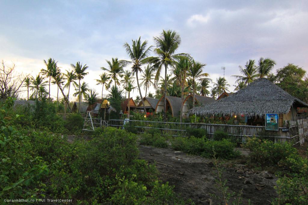 Drumul catre bungalow