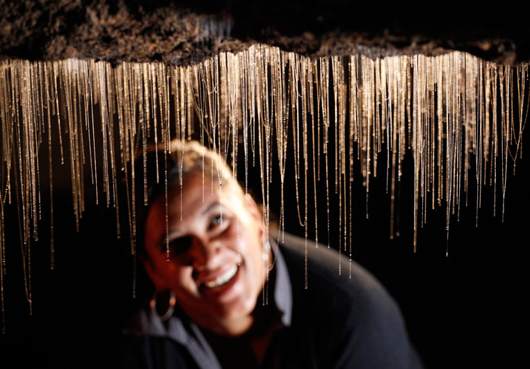 Copyright Waitomo Glowworms Caves