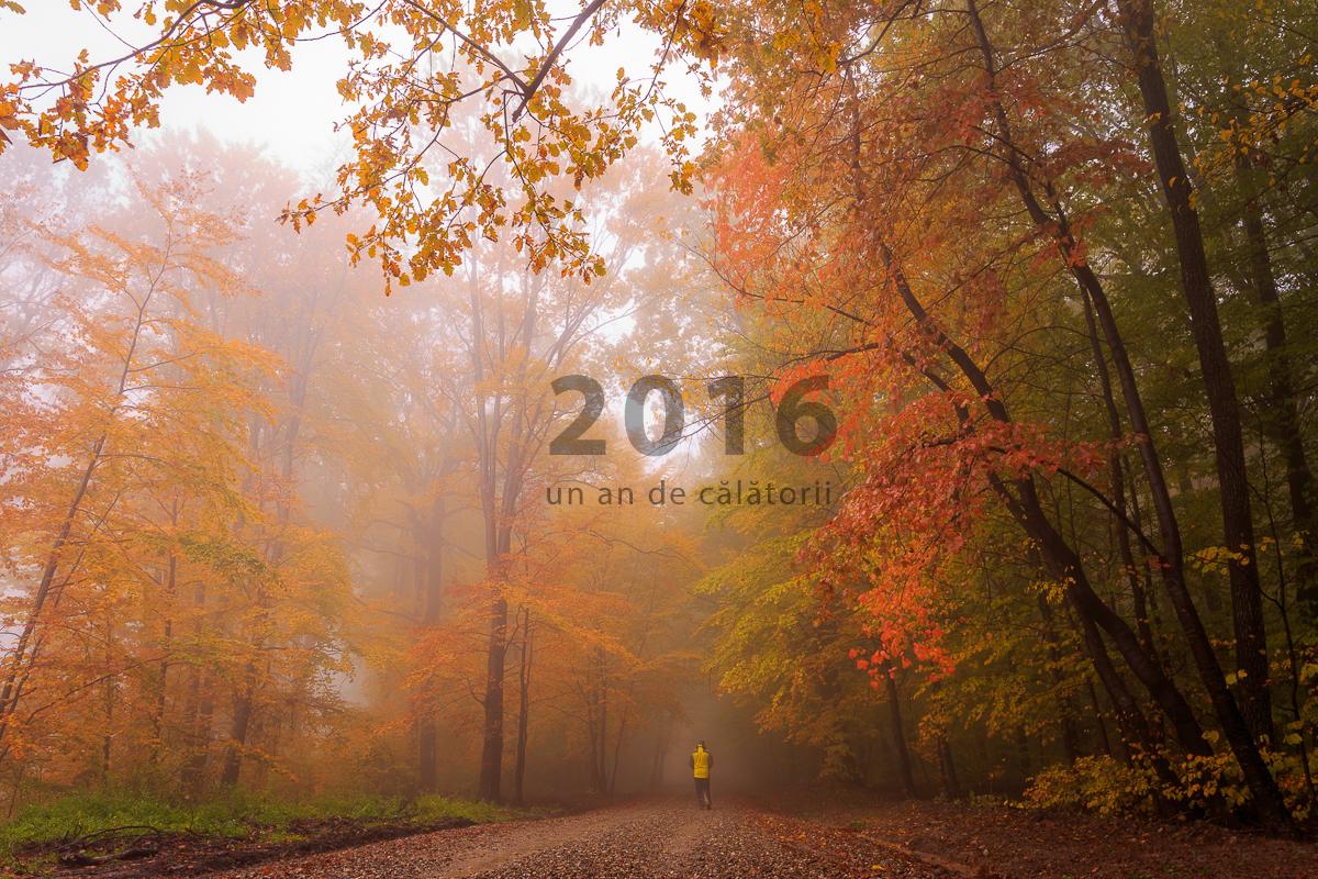 2016, haihui prin România şi împrejurimi